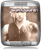 Images-Screenshors-Captures-Avatars-Membre-WiiGen-surcouf84-14022011