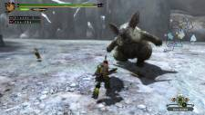 Monster Hunter image 06