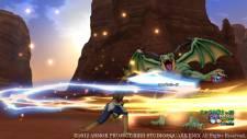 Dragon Quest X dqx_wii_u-5