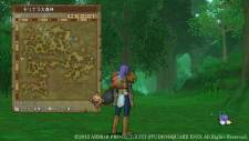 Dragon Quest X dqx_wii_u-6
