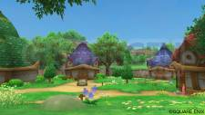 Dragon Quest X 26