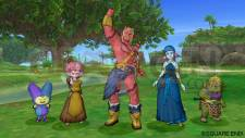 Dragon Quest X 31