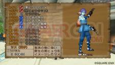 Dragon Quest X 17