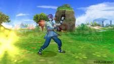Dragon Quest X 1