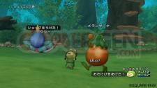 Dragon Quest X 7