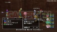 Dragon Quest X 9
