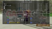 Dragon Quest X 10