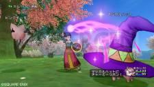 Dragon Quest X 19