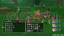 Dragon Quest X 23
