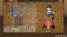 Dragon Quest X 26