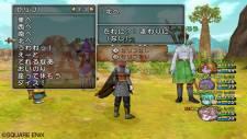 Dragon Quest X 33