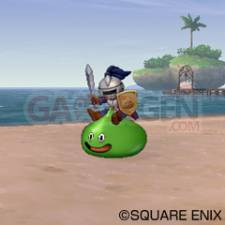 Dragon Quest X 43