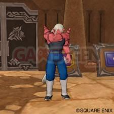 Dragon Quest X 36