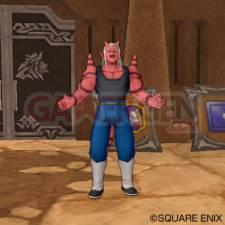 Dragon Quest X 37