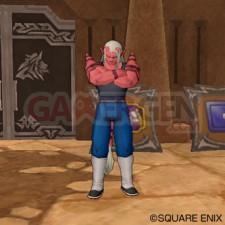 Dragon Quest X 38