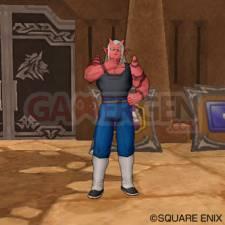 Dragon Quest X 41