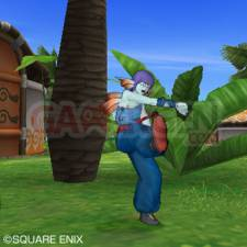 Dragon Quest X 43