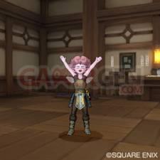 Dragon Quest X 45