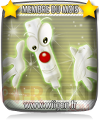 kit_membre_avatar_wii_unique
