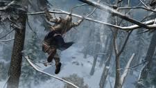 Assassin's-Creed-III_06-06-2012_screenshot-9