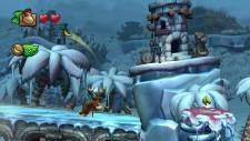 Donkey Kong Country Tropical Freeze 11.06.2013 (7)
