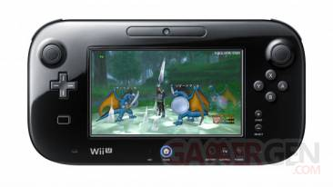 DQX-Wii-U-Spring-dragon-quest-x-mmorpg-image-screenshot-gamepad