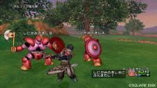 Dragon Quest 17