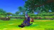 Dragon Quest 22
