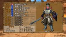 Dragon Quest 24