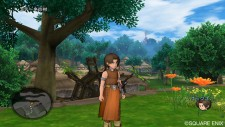 dragon_quest_x-10