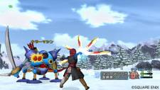Dragon Quest X 13