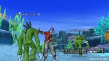 Dragon Quest X 14