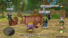 Dragon Quest X 15