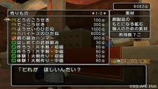 Dragon Quest X 15
