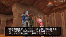 dragon_quest_x-16