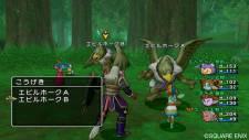 dragon_quest_x-17