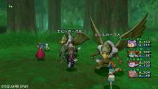 dragon_quest_x-18