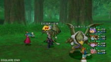 dragon_quest_x-19
