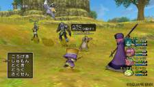 Dragon Quest X 20