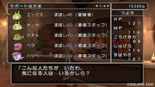 Dragon Quest X 22