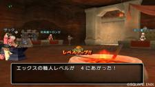 Dragon Quest X 25