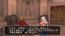 dragon_quest_x-25