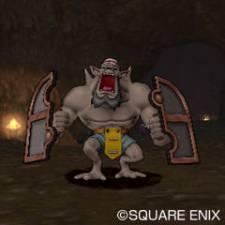 Dragon Quest X 27