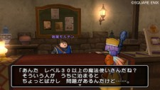 dragon_quest_x-2