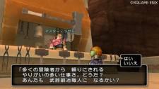 Dragon Quest X 31