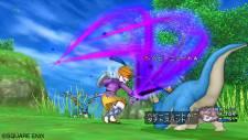 Dragon Quest X 4
