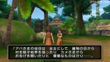 dragon_quest_x_s-4