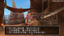 Dragon Quest X 5