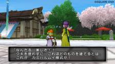 Dragon Quest X 6