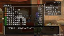 Dragon-Quest-X-Online-10